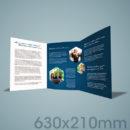 630×210 Folded Flyer & Leaflet Printing